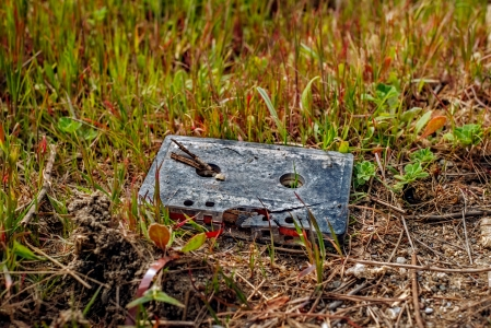 Cassette tape in the grass by the road