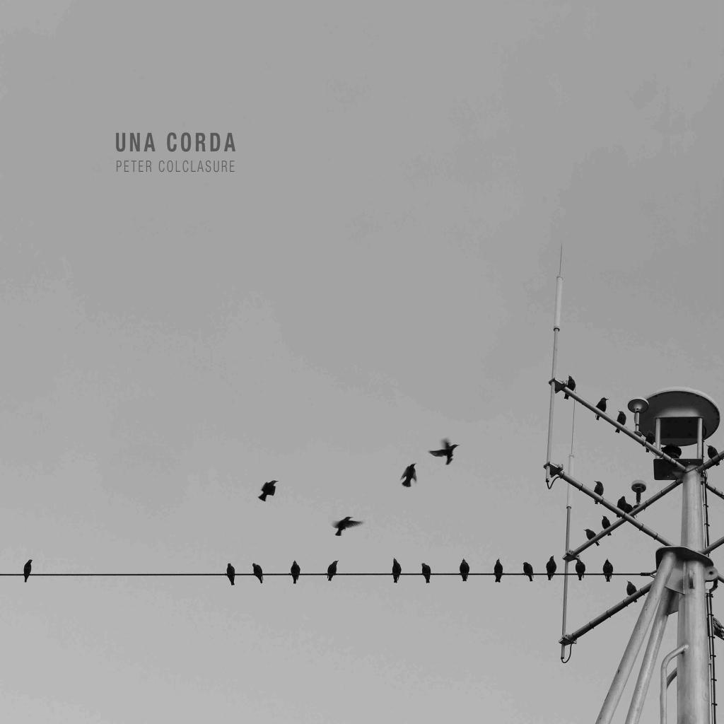 """""""Una Corda"""" LP artwork of birds on a wire."""